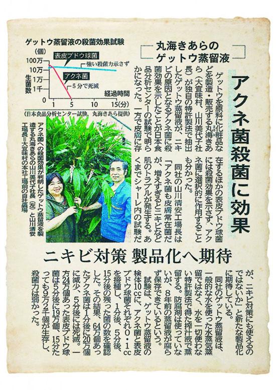 月桃の新聞記事