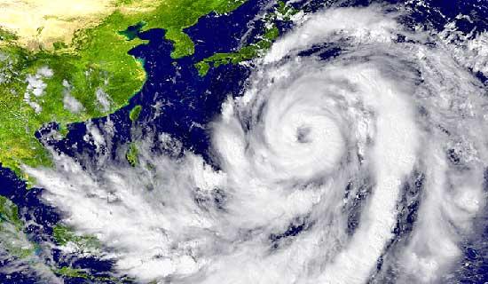 2019年の台風