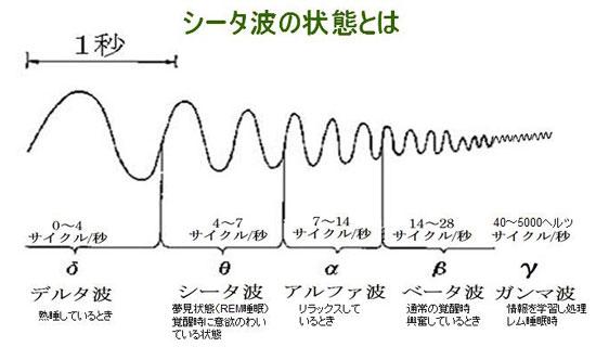 脳波の種類